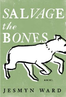 'Salvage the Bones' is Somber