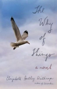 The Why of Things