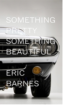 TLC Book Tours: Something Pretty Something Beautiful