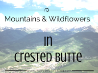 Mountains and Wildflowers in Crested Butte (Photo Gallery)