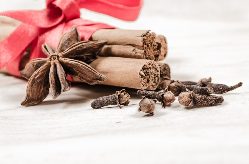 red-winter-spices-decoration-large