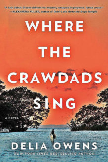 'Where the Crawdads Sing' and the Resiliency of the Human Spirit